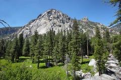 Parc national des Rois Canyon photo stock