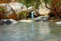 Parc national Ein Gedi photos libres de droits