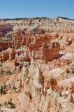 Parc national Utah de canyon de Bryce Image stock