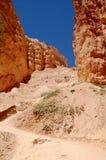 Parc national Utah de canyon de Bryce Images libres de droits