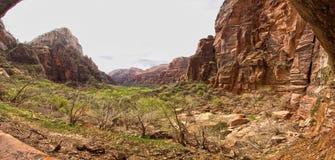 Parc national Utah Etats-Unis de Zion Image libre de droits
