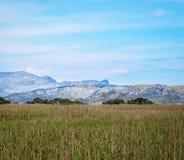 Parc Natural de s'Albufera de Mallorca Stock Photo