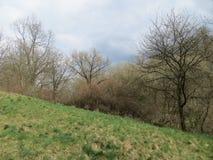 Parc naturel Images libres de droits