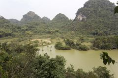 Parc naturel avec des oiseaux au Vietnam photos libres de droits