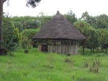 Parc naturel d'Entoto photographie stock