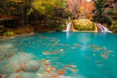 Parc naturel d'Urederra image libre de droits