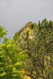 Parc naturel dans Kislovodsk Photographie stock