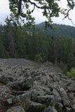 Parc naturel de Detunata Goala Photos stock