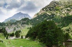 Parc naturel de Posets-Maladeta - vallée de Benasque photographie stock
