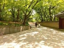 Parc naturel en Corée du Sud images libres de droits