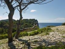 Parc naturel Telascica Photo stock