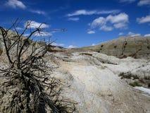 Parc provincial de dinosaure photos libres de droits
