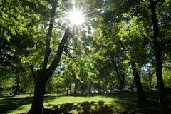 Parc public de Fontaine de La Images libres de droits