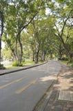 Parc public de Lumpini Photo libre de droits