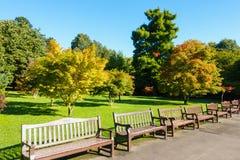 Parc public de Roath en automne Image libre de droits