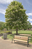 Parc public en Boise Idaho Image libre de droits