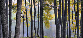 Parc régional d'Asveja Photographie stock libre de droits
