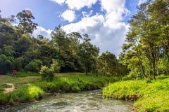 Parc régional de Hunua Images stock