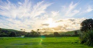 Parc régional de Tawharanui Photos stock