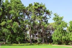 Parc Ramat Hanadiv, jardins commémoratifs de Baron Edmond de Rothschild, Zichron Yaakov, Israël photographie stock