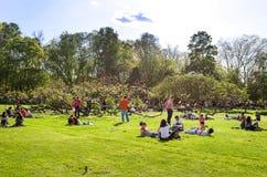 Parc-relaxation images libres de droits