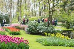 Parc royal Keukenhof, touristes brouillés de fleur à l'arrière-plan, foyer sélectif Lisse, Pays-Bas photographie stock