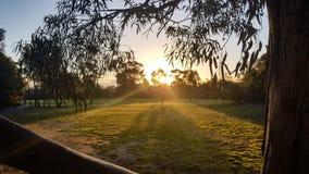 Parc royal, Melbourne photos libres de droits