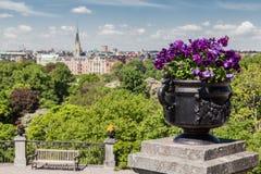Parc Stockholm Suède de Skansen Images libres de droits