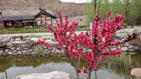 Parc superbe de fossé dans Shanxi image libre de droits