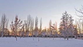 Parc urbain avec la neige au crépuscule photos stock