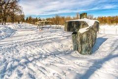 Parc zimy scena Obrazy Stock