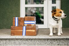 Free Parcel Delivery Outside Door Royalty Free Stock Photo - 183567595