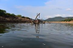Parcela da montanha em quedas de Hogenakkal na Índia foto de stock royalty free