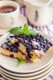 Parcela de bolo caseiro fresco do mirtilo Foto de Stock