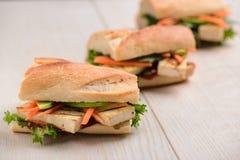 Parcela de sanduíches do vegetariano foto de stock