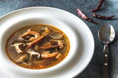 Parcela de sopa tailandesa de tom yum imagens de stock