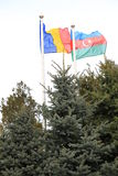 Parceria e bandeiras no vento Fotos de Stock