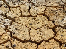 Parched and cracked soil Royalty Free Stock Photos