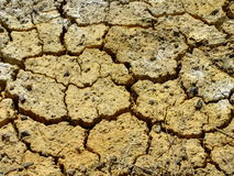 Parched and cracked soil Stock Images