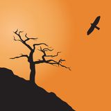 Parched dead tree. Dead tree. Illustration for you design Stock Photo