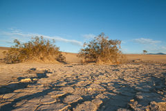 Parched Death Valley Stock Images