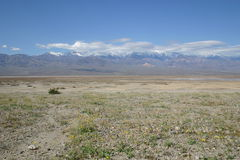 The parched desert scrub Death Valley. Barren Death Valley Royalty Free Stock Photo