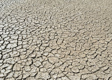 Parched desert soil Stock Image