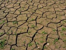 Parched earth. Dried clay field stock photos