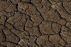 Parched Earth Stock Images