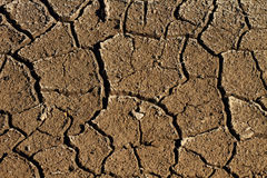 Parched Earth Royalty Free Stock Photos