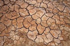 Parched earth Stock Image
