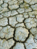 Parched earth. Dry cracked field in Thailand stock photo