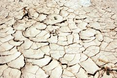 Parched Earth. And cracked mud in the desert royalty free stock image