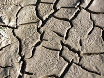 Parched earth with cracks Royalty Free Stock Image